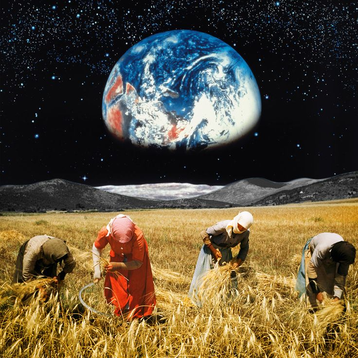 Harvest From Earth - Creative Debuts