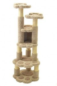 kitty condo for the kids :)