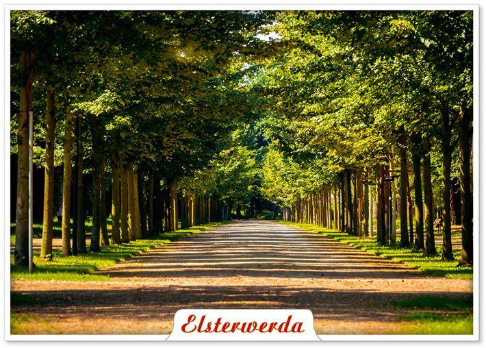 Elsterwerda Schlosspark-Allee    ©ImBild Verlag