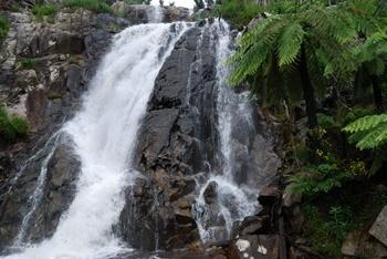 Stevensons falls near Marysville