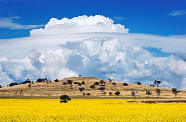 The 2014 calendar of the Australian Bureau of Meteorology and the Australian Meteorological and Oceanographic Society