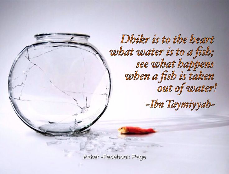 Dhikr is to the heart what water is to a fish; see what happens when a fish is taken out of water! - Ibn Taymiyyah