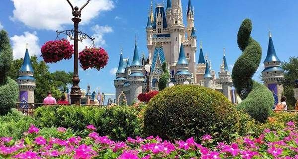 6 Things You Absolutely Need for the Disney College Program