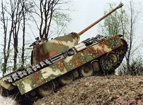 Panther from the Hermann Göring division, autumn 1944.