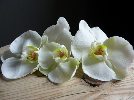 3  witte orchideeen liggend op een houten krukje