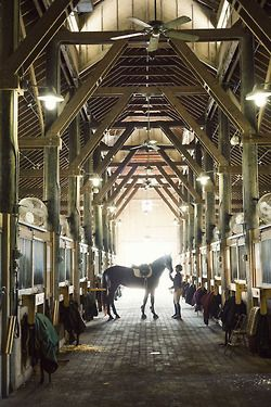 Ronald C Waranch Equestrian Center, SCAD EQUESTRIAN program. My old stomping grounds. A truly beautiful place