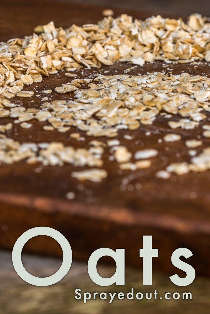 Oats to promote some healthy eating habits, starting with breakfast. #Oatmeal one of the best choices for #breakfast. Free picture to use on your blog. #photography