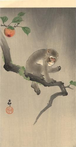 """Monkey on the Tree"" by OHARA Koson (1877-1945), Japan 小原 古邨"