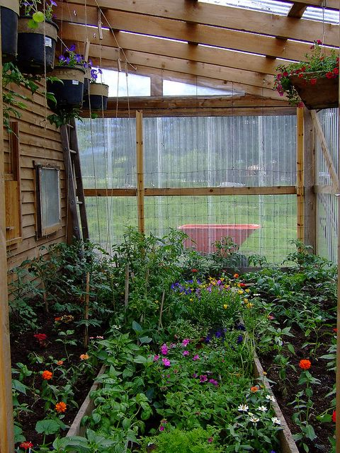 greenhouse, lovely and lush, could be made from recycled materials, but how do you get in there?!