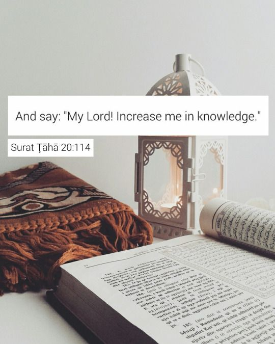 و قل ربي زدني علما