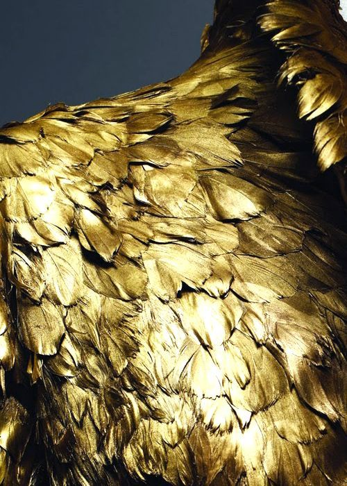 "dream-minded:  Gold duck feathers, from a Coat of the Alexander McQueen's collection ""Savage Beauty"", shown at the Metropolitan Museum of Art in Fall 2011"
