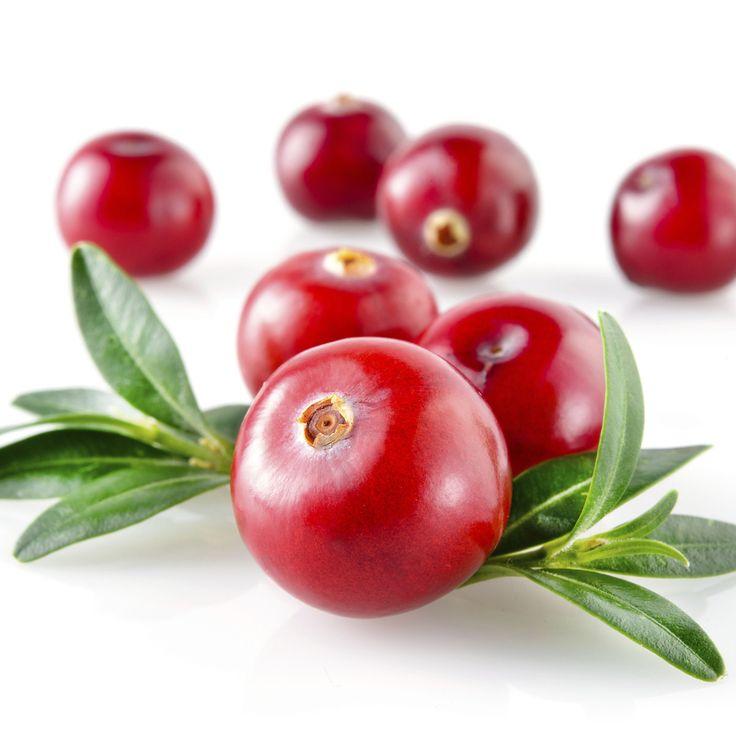 Cranberry Extract W.S