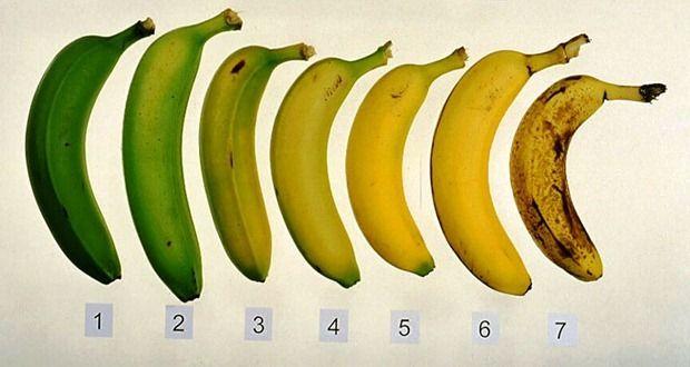 vreemde-voedsel-feiten-bananen-de-feiten