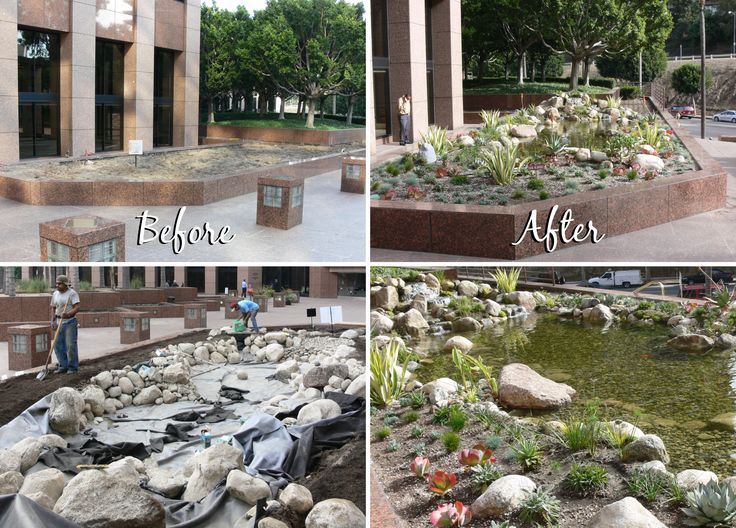 L.A. Department of Building and Safety This is an 11' x 24' pond with a 12' stream, built 7 years ago! This beautiful water featu… | Water features, Aquascape, Lawn