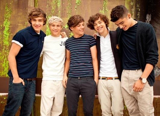 Harry Styles, Zayn Malik, Liam Payne, Niall Horan and Louis Tomlinson :)