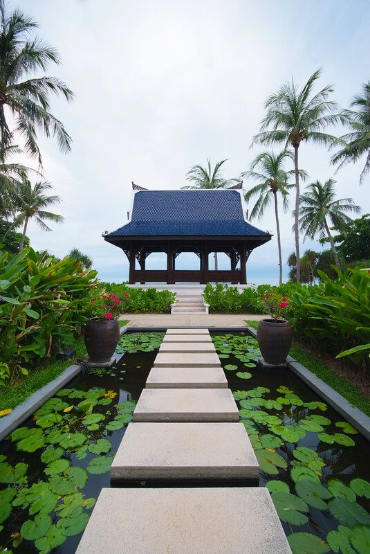 Walkway on pond full of water lilies in tropical garden, Koh Samui, Thailand.