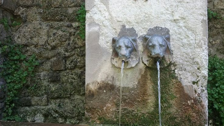 Lions Spitting Water
