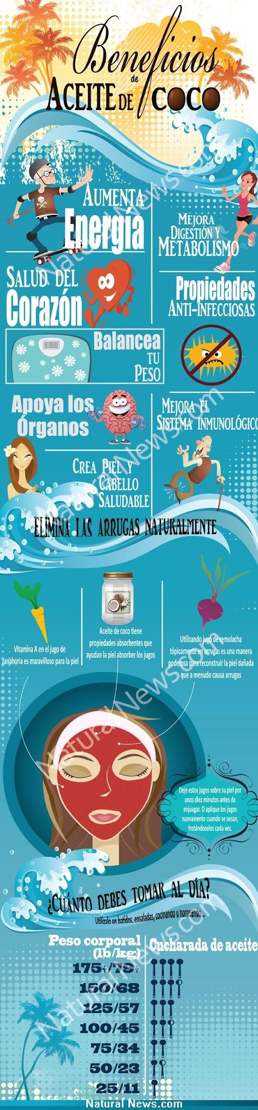 Beneficios del aceite de coco. http://www.pinterest.com/pin/387942955374031633/