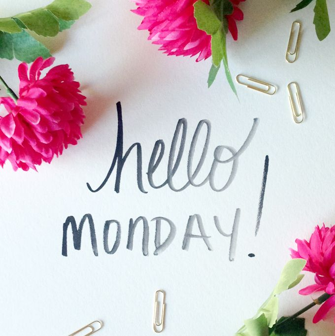 Happy Monday to all club members! The excitement mounts for the Chelsea Flower Show at the What's Hot board!