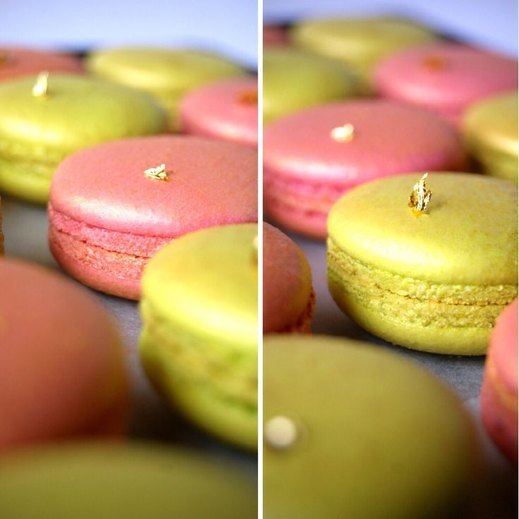 10 best ducobu images on pinterest | french pastries, pastry shop