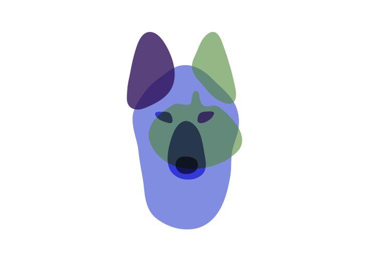 Александра Филинович  / 1 курс / прозрачность  #transparency #animal #logo #bdinstitute #институтбизнесаидизайна