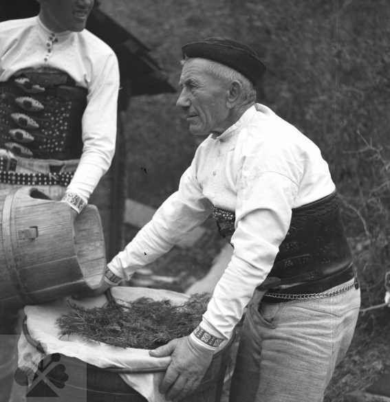 Cedenie ovčieho mlieka na salaši. Žakarovce (okr. Gelnica), 1953. Archív negatívov Ústavu etnológie SAV v Bratislave. Foto J. Látalová.