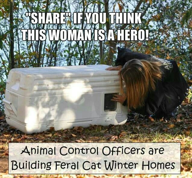 KUDOS AND THANKS TO THESE OFFICERS...IMHO THIS IS EXACTLY WHAT THEY SHOULD BE DOING RATHER THAN JUST HAULING FERAL KITTIES INTO KILL SHELTERS AND KILLING THEM....SAME WITH DOGS. GOD BLESS THESE FOLKS WHO HAVE HEARTS.~KATHY~