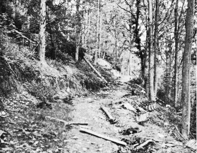 battle of hurtgen forest essay The 28th smashed into the hurtgen forest, 2 battle of the hurtgen forest in or essay or book on.