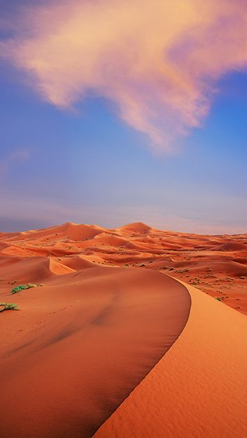 Best 25 Casablanca Morocco Ideas On Pinterest Morocco