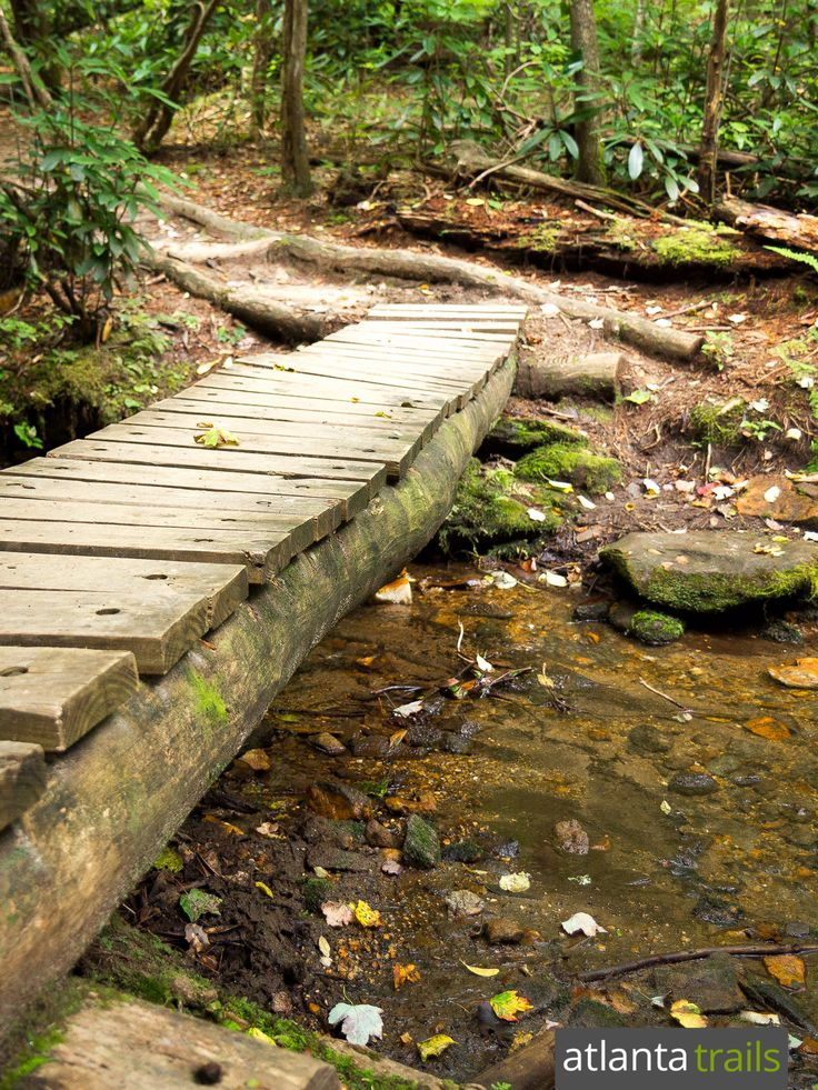 Hike the Appalachian Trail to Georgia's Springer Mountain, crossing rustic bridges in a lush creek valley