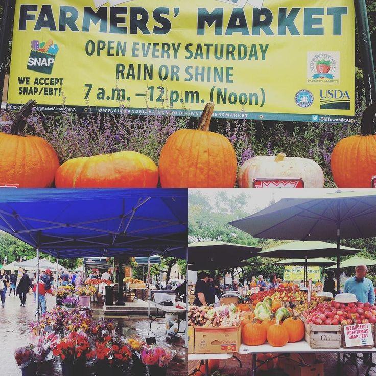 A little rain won't stop the weekly farmer's market in Old Town Alexandria which has everything from pumpkins to voter registration today! - - #extraordinaryalx #alexandria #virginia @visitalexva #farmersmarket #pumpkin #fall #instafall #vote #rockthevote #rain