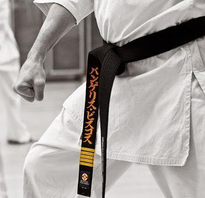 MACAM - MACAM SENI BELA DIRI: Tingkatan Dalam Beladiri Karate Shotokan