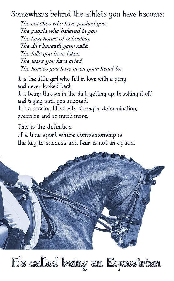 Be Equestrian Quote Photograph by JAMART Photography