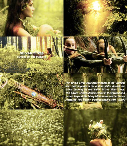 Elven races: Silvan Elves