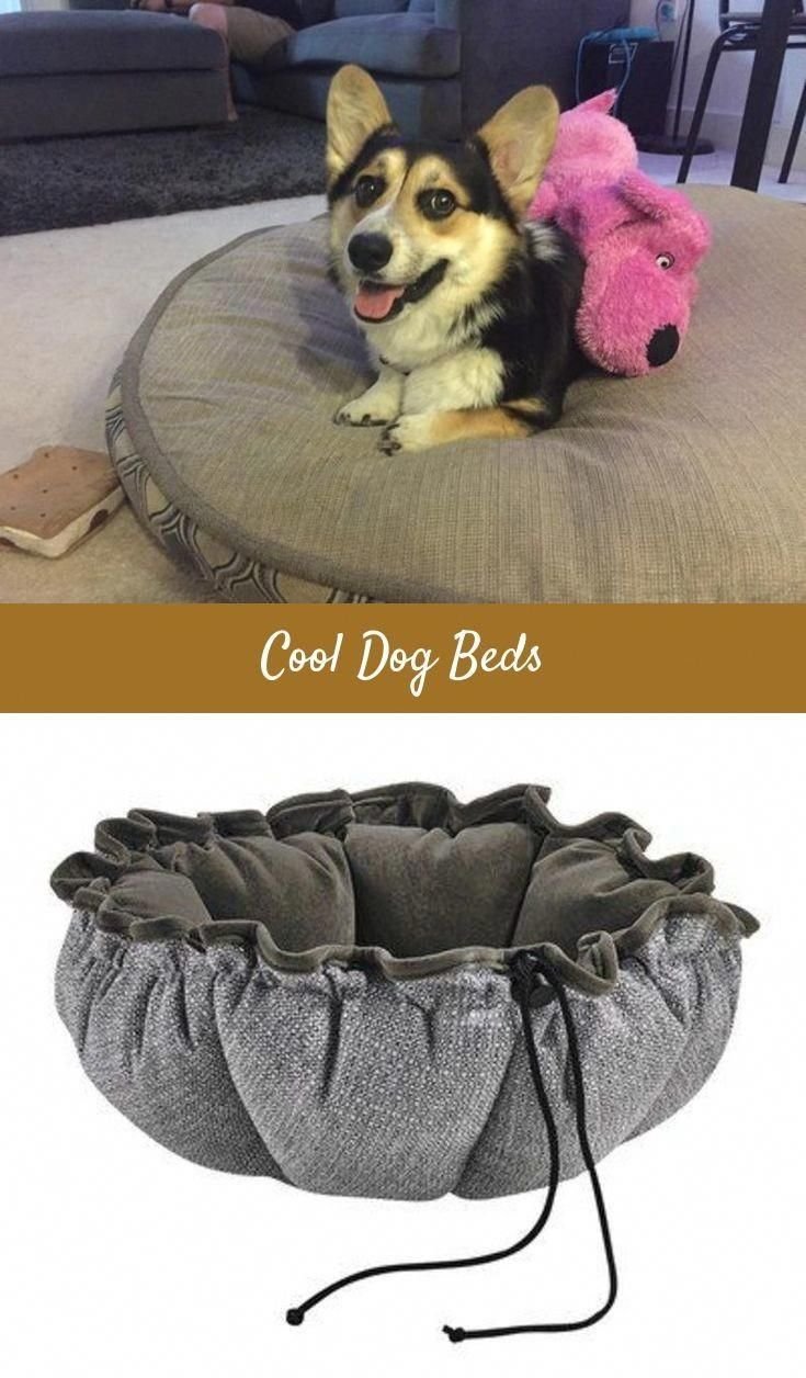 Latest Dog Beds For Both Small Large Dogs Going To By Cheap Dog Bed Dog Steps For Beds Or Even See Details Memor Dog Bed Large Top Dog Beds Cheap Dog