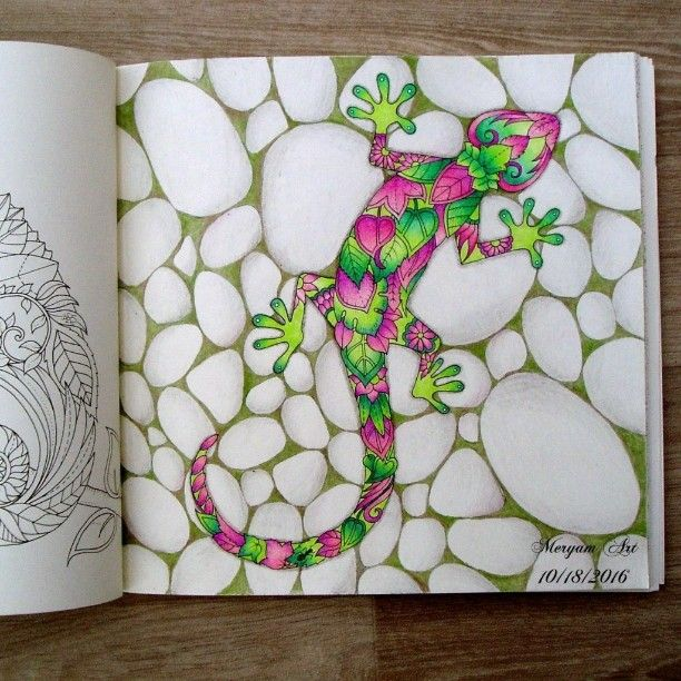 Magical Jungle lizard