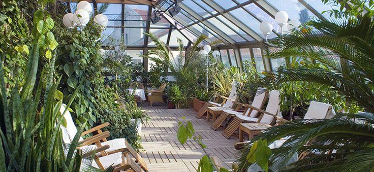 Пристройка зимнего сада к фасаду жилого дома позволяет снизить потери тепла зданием в зимний период. Особенно, если он расположен с северной стороны. Но главное достоинство конструкции – она расширяет жилое пространство и дает возможность культивировать теплолюбивые растения круглый год.