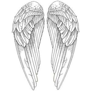25 Best Ideas About Angel Wings Drawing On Pinterest
