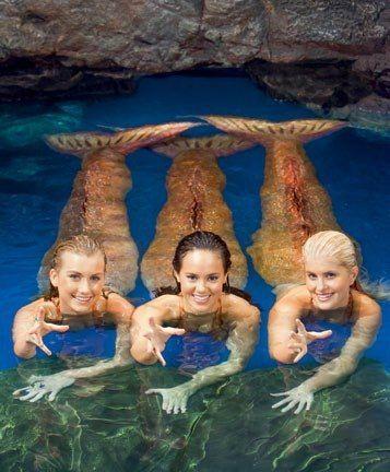 Mako Mermaids - Season 2 The Girls left to right Ondina, Mimmi, and Sirena.