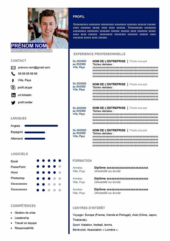 Exemple de CV Manager - Télécharger Gratuit | Modèle CV ...