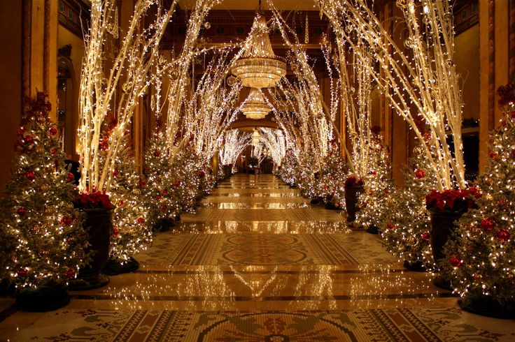 Roosevelt hotel at christmas what it means to miss new Latest christmas decorations