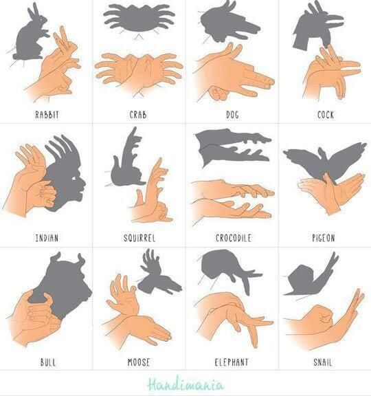 How to make shadow puppets with your hands