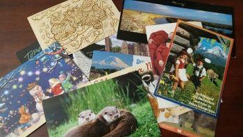 Échange de cartes postales de partout dans le monde    #cartepostale #homechool #postcrossing #tourdumonde