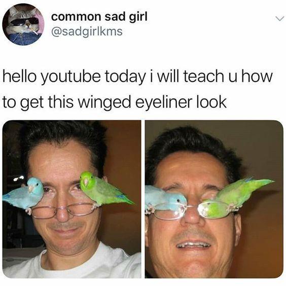 Top 20 Hilarious Funny Makeup Memes – #Funny #Hila…