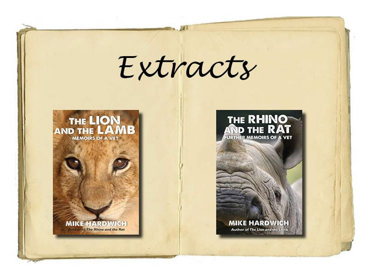 Read extracts from The Lion and the Lamb & The Rhino and the Rat