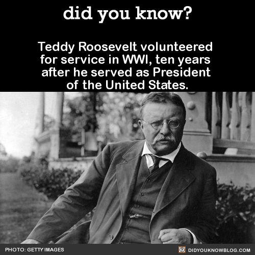 Theodore Roosevelt Quotes Amusing 7 Best Theodore Roosevelt Images On Pinterest  Theodore Roosevelt . Decorating Inspiration