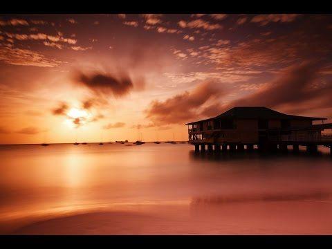 Musique Relaxante et Ondes Alpha - Etude Concentration Mémoire - Détente Sommeil - 3 Heures - YouTube