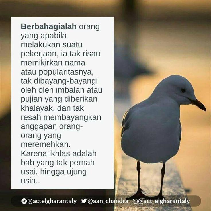 https://www.facebook.com/mutiaranasihatislam/photos/a.1446290785682562.1073741828.1445364179108556/1901791016799201/?type=3
