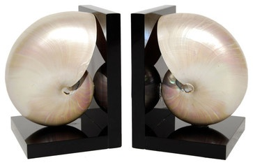 Stunning Nautilus Shell Bookends - tropical - accessories and decor - 1stdibs