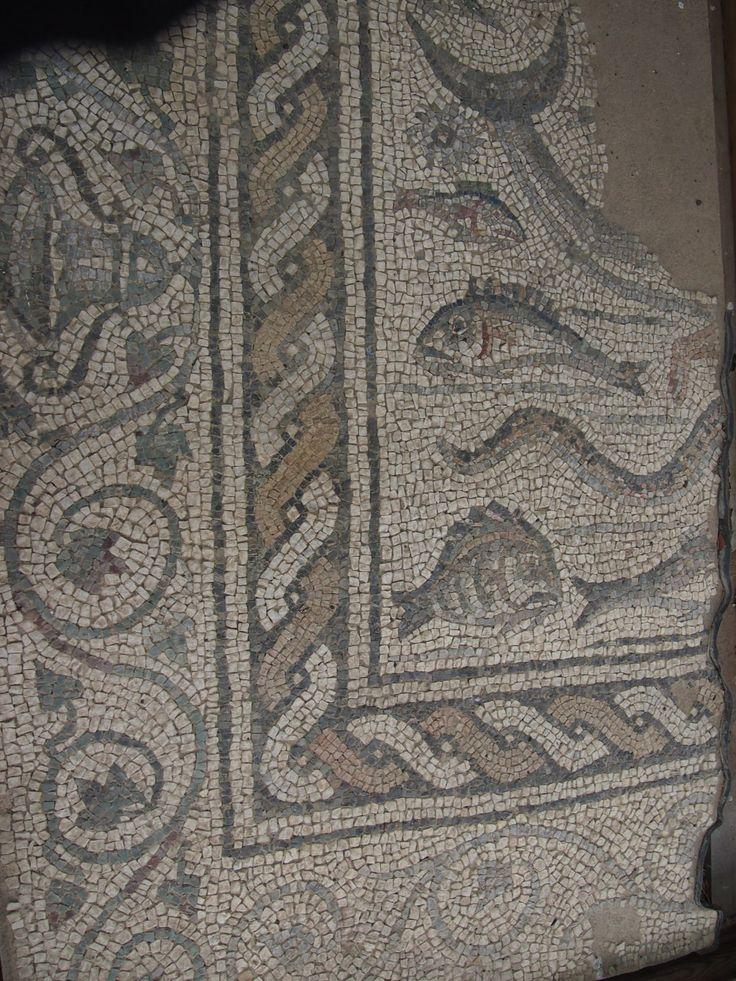 Luni il mosaico dell'oceano, particolare della cornice